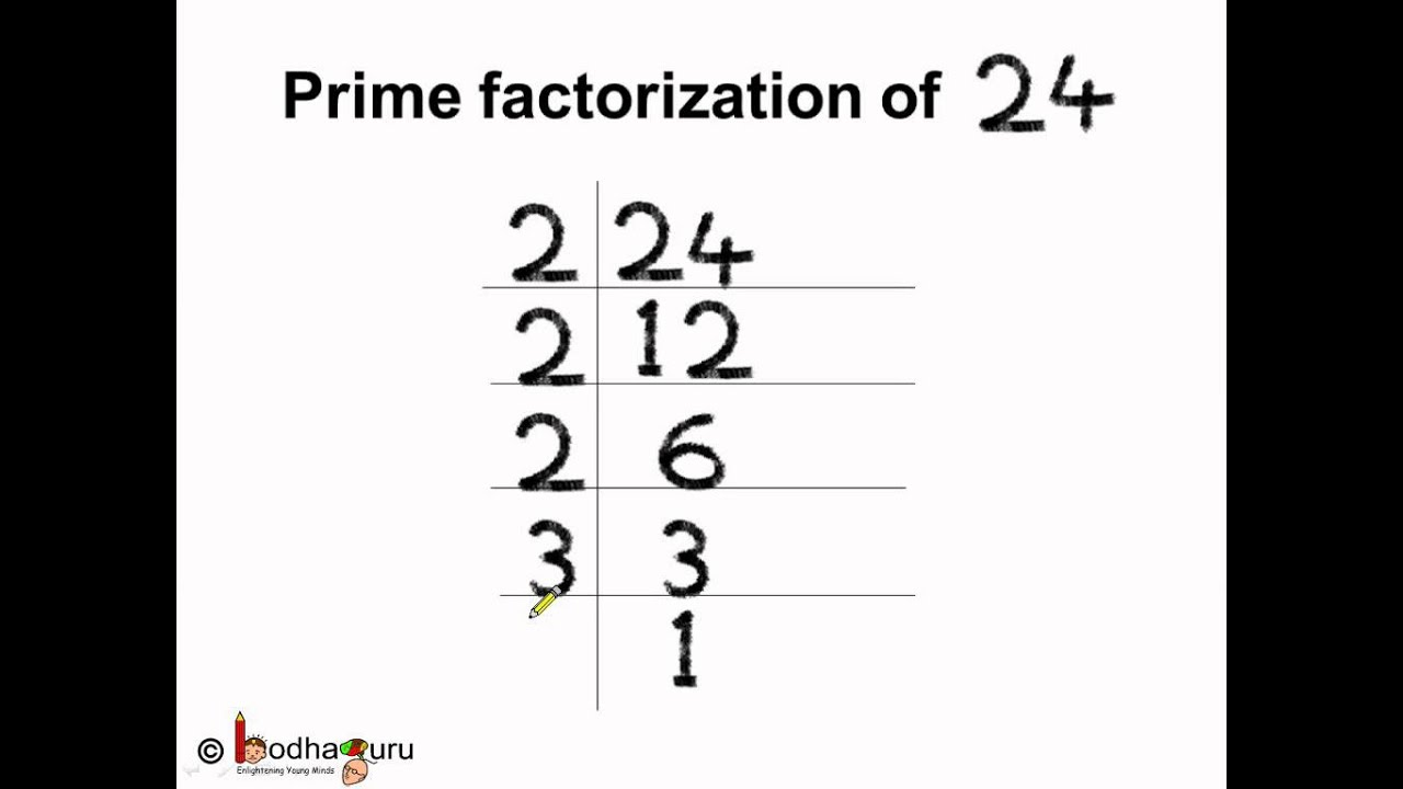 prime factorization with step diagram
