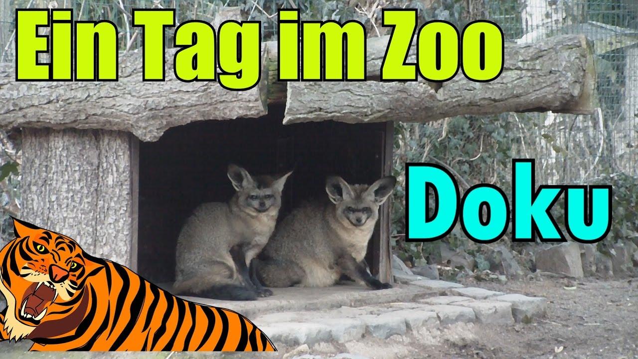 Zoo Doku