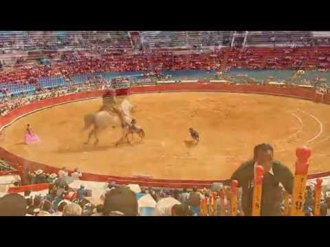 Bullfighting in Mexico City