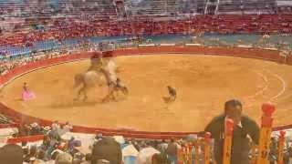 Bullfighting in Mexico City