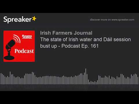 The state of Irish water and Dáil session bust up - Podcast Ep. 161