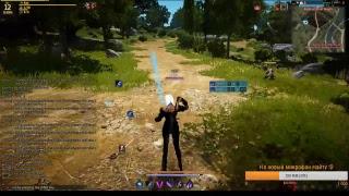 Black Desert Kaia Info Stream