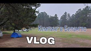 ВЛОГ: Кемпинг в лесу Белангло