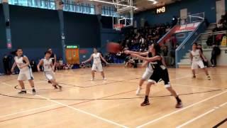 2016-2017 中學校際籃球比賽 第一組 (九龍區) 女