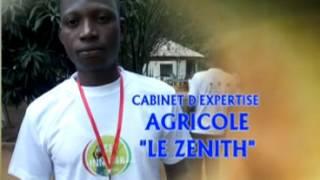Projet de production des Foyers Écologique au Bénin