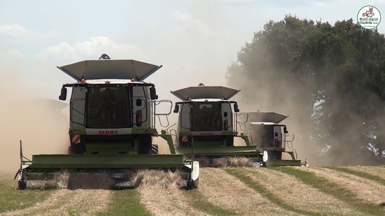 Grassamen Ernte 2019 - Rückblick mit neuen Szenen - Multi Agrar Claußnitz GmbH, Claas Lexion, JCB