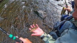 Рыбалка в Приморье Река Журавлевка Хариус ленок 19 23 07 2021 г Часть 1