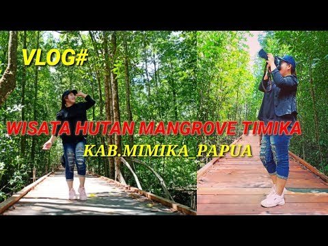 Vlog Wisata Alam Hutan Mangrove Timika,Kab.Mimika-Papua