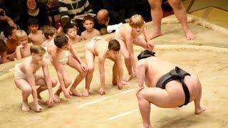 2018.02.11日本大相撲トーナメント第四十二回大会⑨ちびっこ相撲(高安&...