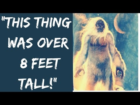 10 True Stories of Strange Creatures In The Woods!