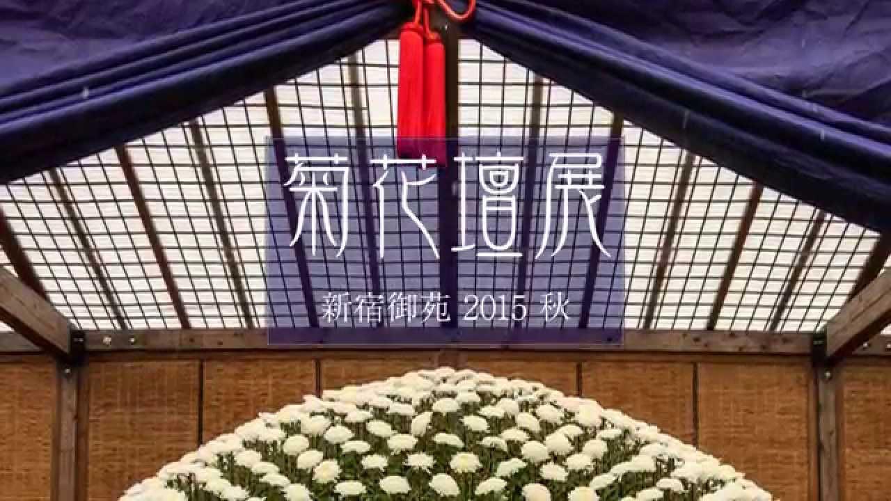 画像: 【2015】新宿御苑の菊花壇展|花鳥風月 www.youtube.com
