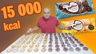 100 Muffinsia (~15 000kcal)
