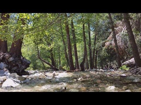 Forest Falls Waterfall in San Bernardino National Forest