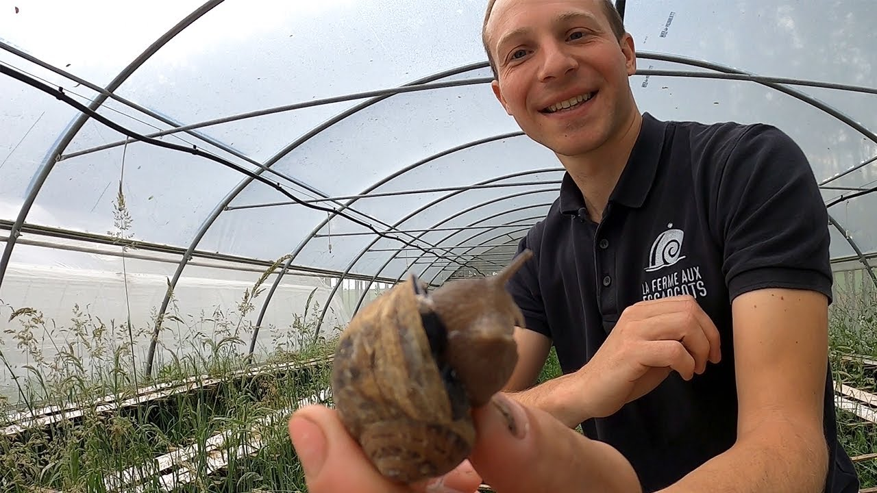 Escargots 🐌 Eating French Food at a Snail Farm
