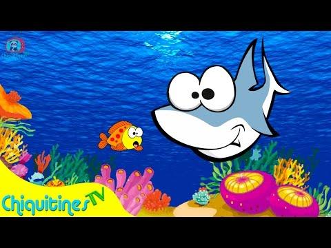 3 pecesitos se Fueron a Nadar - Canción Infantil