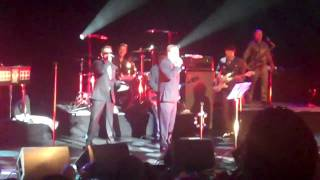 Death of a Rude Boy - Madness at  Meltdown, Festival Hall