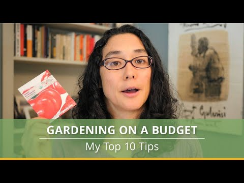 Top Ten Tips for Gardening on a Budget