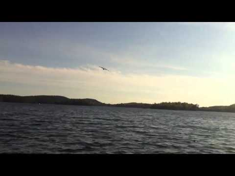 Waterbomber plane drops close up