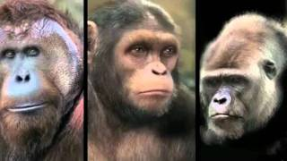 Восстание планеты обезьян: За кулисами