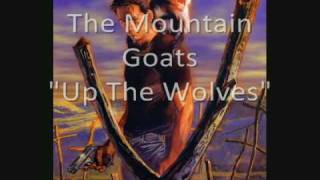 The Mountain Goats - Up The Wolves