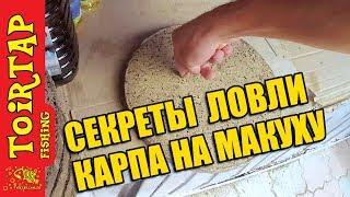 Секреты ловли КАРПА!! | Ловля карпа на макушатник! | Как правильно выбрать макуху!!