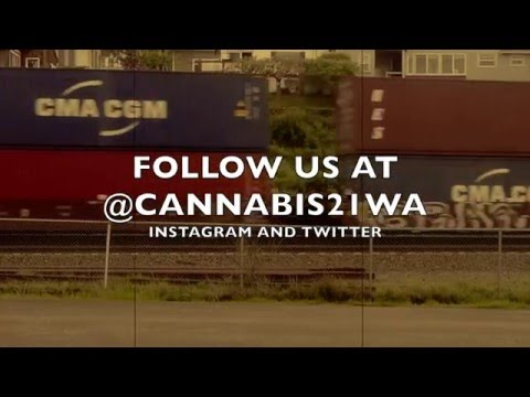 Cannabis 21 - Behind the Scenes: Glass Shop