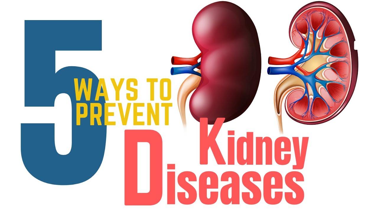 5 Ways To Prevent Kidney Diseases Prevent Kidney Failure Youtube