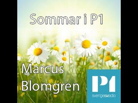 Marcus Blomgren - Sommar i P1 2016