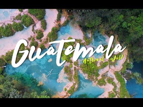 Guatemala Wild
