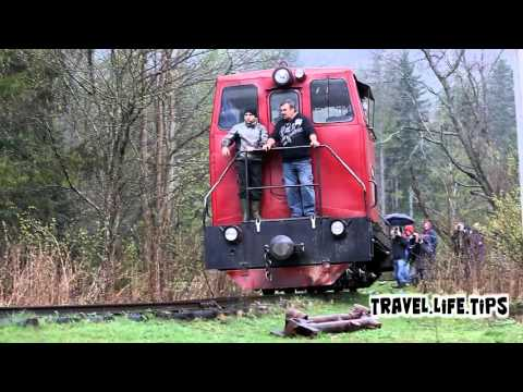 Carpathian narrow gauge railway 2016.