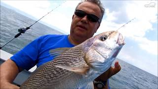 Pescaria em Alto Mar Corvina