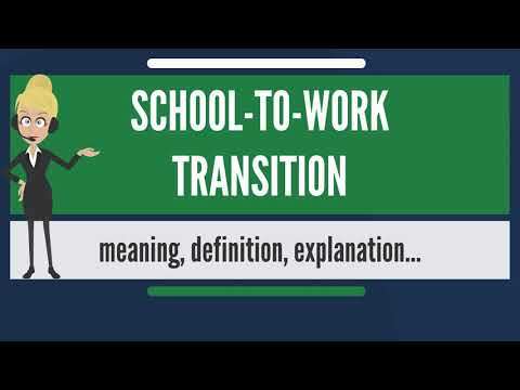 What is SCHOOL-TO-WORK TRANSITION? What does SCHOOL-TO-WORK TRANSITION mean?