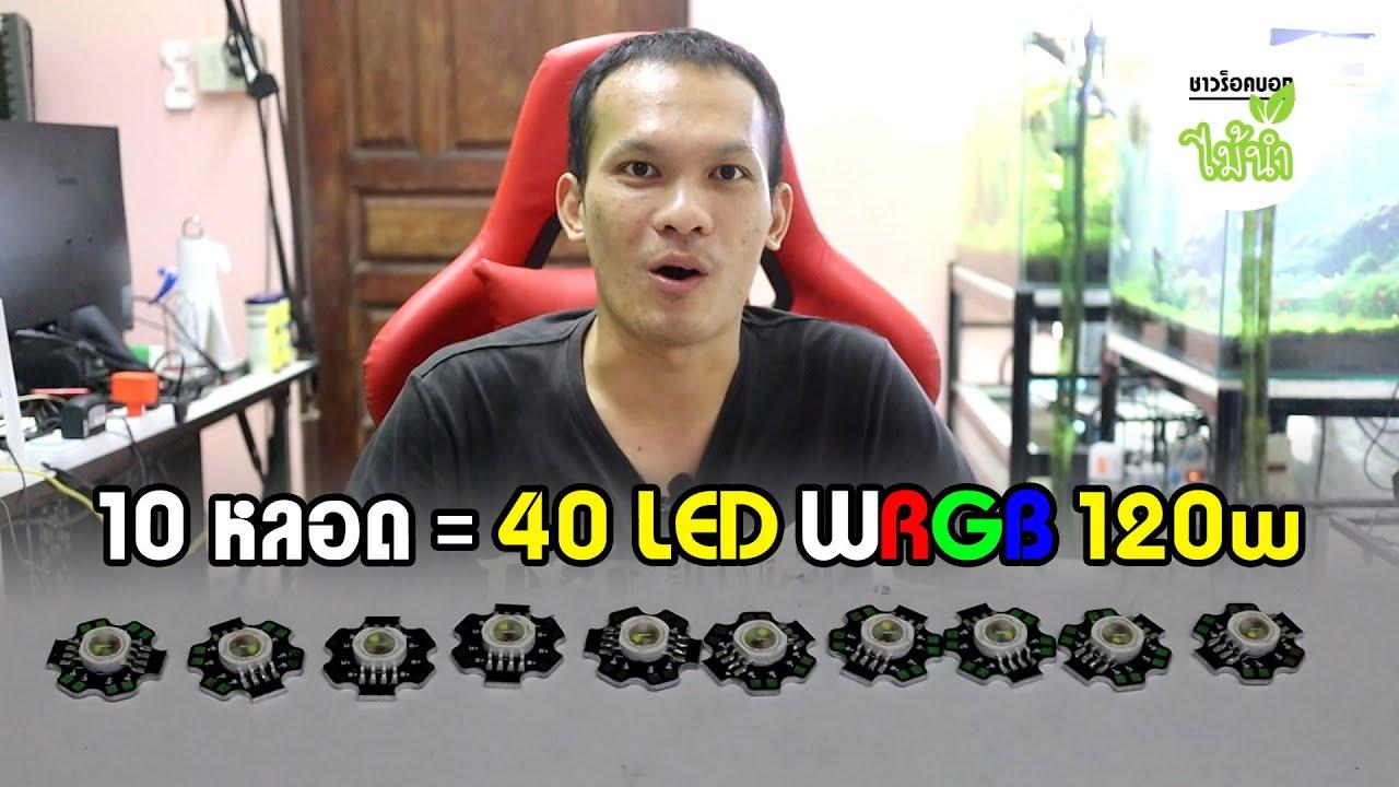 LED สำหรับ DIY ไฟไม้น้ำ 4 สีในหลอดเดียว WRGB High Power 12w | ชาวร็อคบอกไม้น้ำ