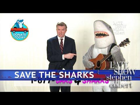 Call 1-877-Cars-4-Sharks