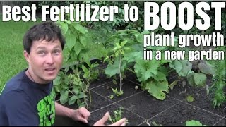 Best Fertilizer to Boost Plant Growth in a New Garden
