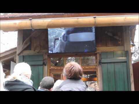 Europa Park: Trailer VR Coaster Alpenexpress Enzian - 9 Gennaio 2016 - unavitaatestaingiu.it