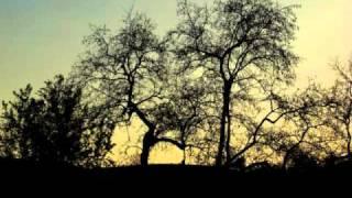 天起涼風時你在園中走你牽我的手喜悅珍惜我天起涼風時伊甸花園中你我同坐席細細開啟我每天我等候天起涼風時你燦爛笑容吹入我心中...