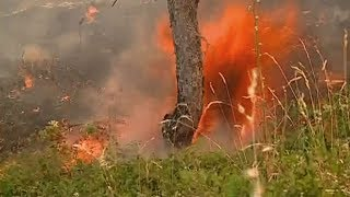 Katastrofalni požari u Hrvatskoj