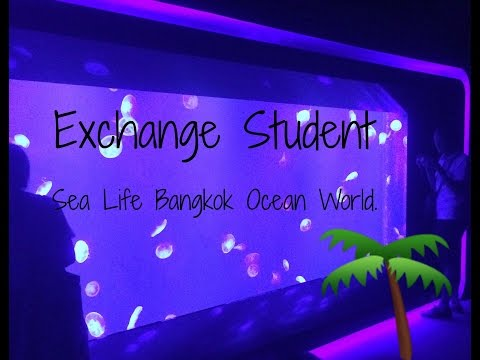 Thailand Exchange Student | Sea Life Bangkok Ocean World. ♡