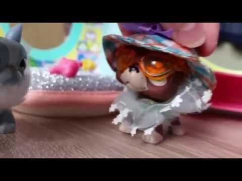 "LPS: ""Zakręceni"" #26 Littlest Pet Shop"