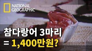 참다랑어의 가격은 어떻게 정해질까?
