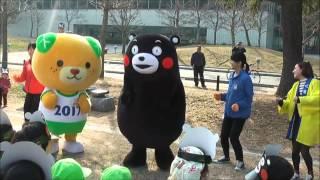 国体みきゃんとくまモンが「えがお体操」と「えがおダンス」を披露(H27.1.21) thumbnail