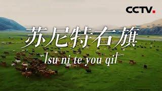 《中国影像方志》 第725集 内蒙古苏尼特右旗篇| CCTV科教 - YouTube