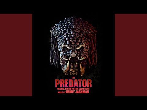 Man Vs. Predator
