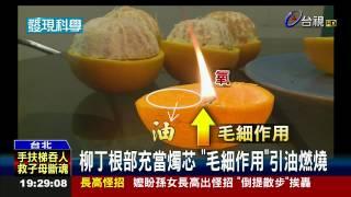 停電不用怕!柳丁+沙拉油變蠟燭好方便