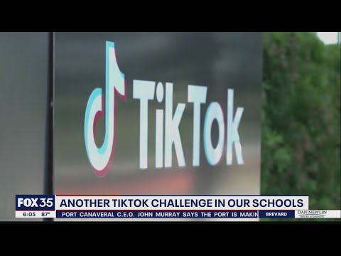 'Smack a teacher' TikTok trend could result in criminal charges, a slapback, 'or worse.' One teacher promised 'extra hands-on learning' in response: Report