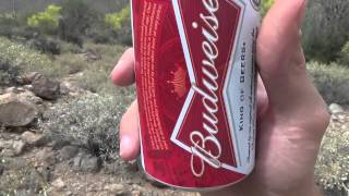 Budweiser Beer Review (Again)(, 2015-04-27T00:21:07.000Z)