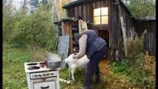 Видео прикол  Модест и кулинария   Городок, официальный сайт(, 2009-03-22T09:21:31.000Z)