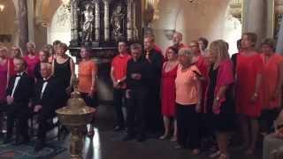"""Hillerød Rockkor - """"Uden forsvar"""" (Marie Key) til bryllup i Frederiksborg Slotskirke"""