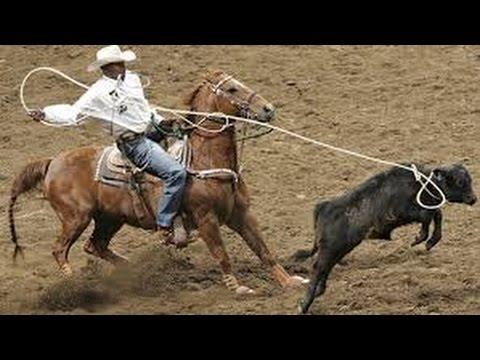 Competencia de Lazo y Barril en Caballos - TvAgro por Juan Gonzalo Angel
